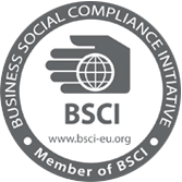U10 - BSCI logo